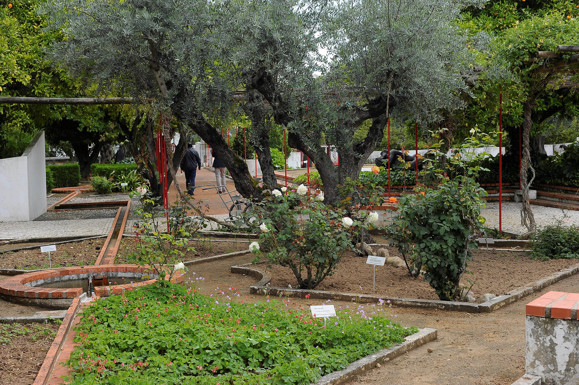 The Garden is unique. It's a living monument to Camões, it pays homage to the writer through the plants he refers to in his works