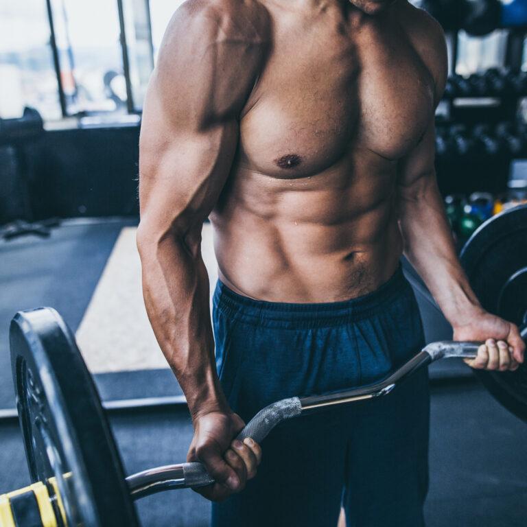Estratégias para ganhar massa muscular