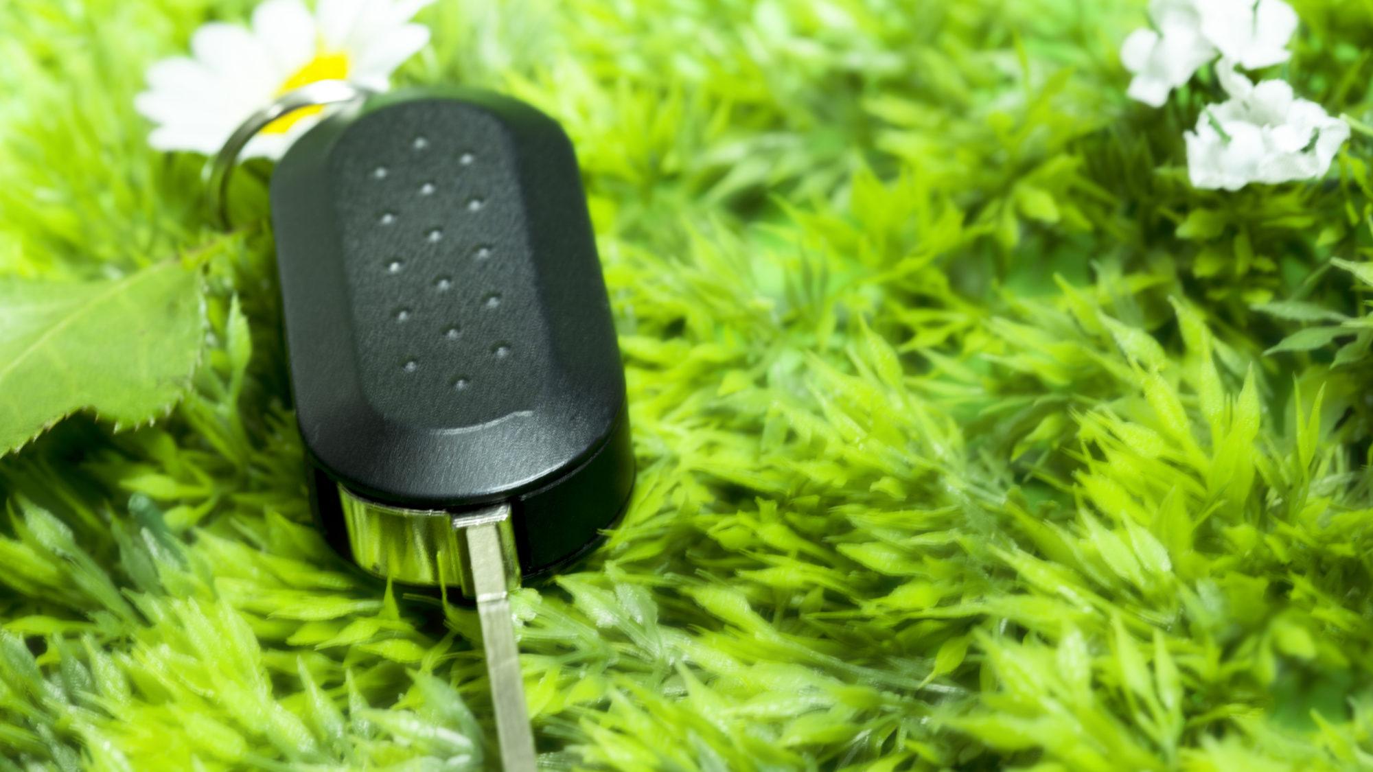 Condução mais verde: dicas para diminuir a pegada ecológica do seu carro