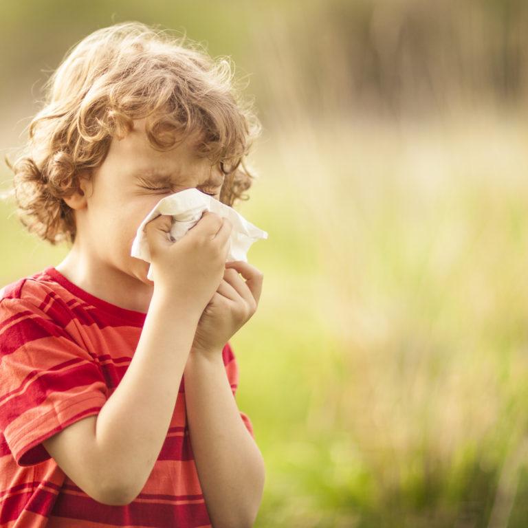 Alergénios domésticos, como eliminá-los