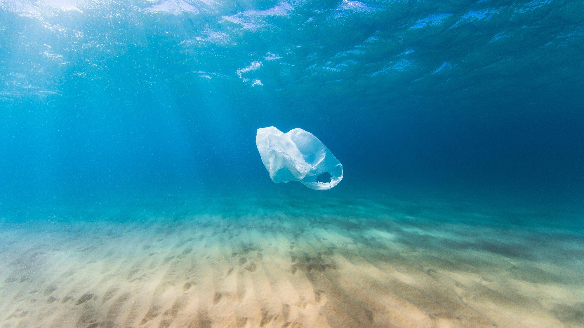 Reduza a sua pegada de plástico este Natal e não só