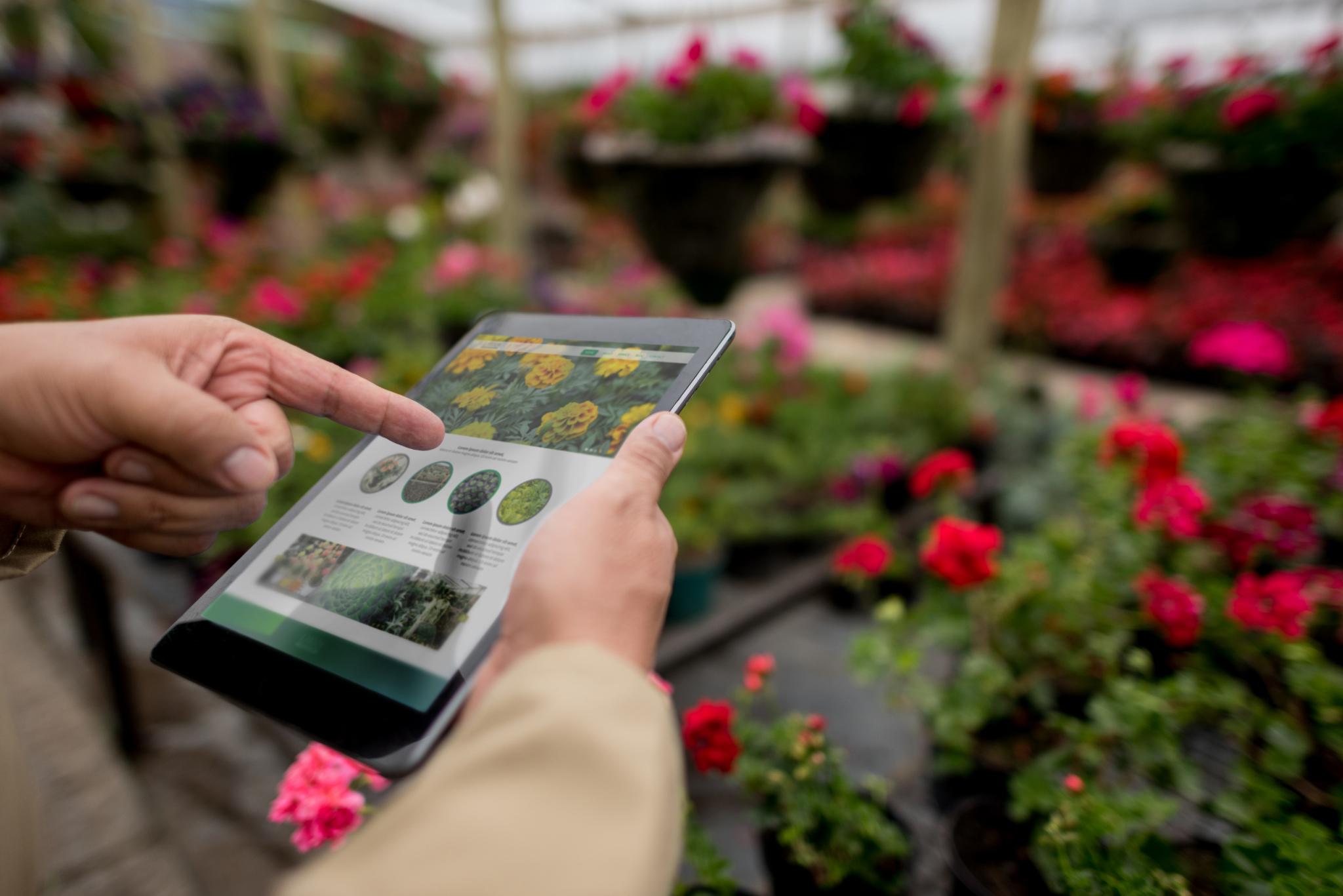 Apps para os amantes de jardinagem