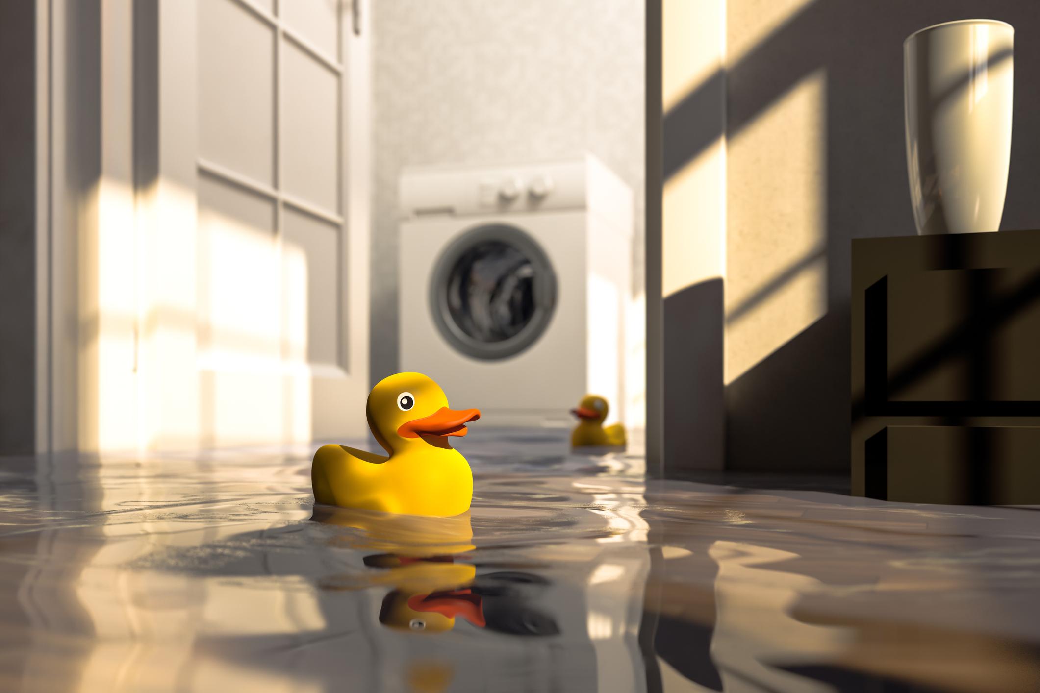 SOS inundação em casa: o que fazer
